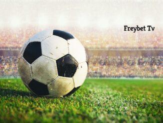 Freybet Tv